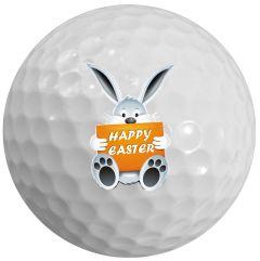 Easter Rabbit 02