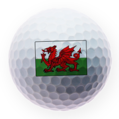 Welsh Flag Printed Golf Balls | Best4Balls