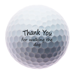 https://www.best4balls.com/pub/media/catalog/product/t/h/thank-you-for-walking-the-dog-2.png