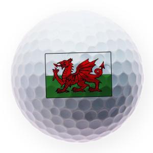 https://www.best4balls.com/pub/media/catalog/product/w/e/welsh-flag-ball.png