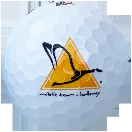 2 colour logo balls2