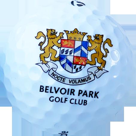 Logo golf balls 4 colour print